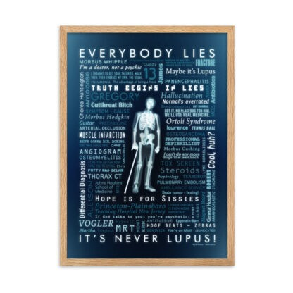 poster house everybody lies